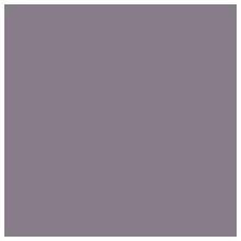 fleur-de-vie-carnet-des-possibles-caticapponi